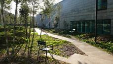 El Instituto Municipal de Parques y Jardines del Ayuntamiento de Barcelona arrasa los jardines de can Framis