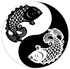 Peces Yin Yang, por José María Baquero