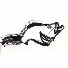 Pez Chernia, por Gustavo Nielsen