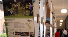 La XI BEAU entrega sus premios e inaugura su exposición en Comillas