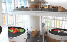 Ideas para escuelas (incluso de arquitectura): espacios abiertos para la investigación y el grupo