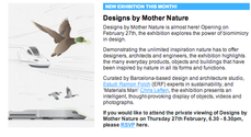 Designs by Mother Nature, London ROCA Gallery