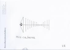 Peix-calimetre, por Ramon Bosch