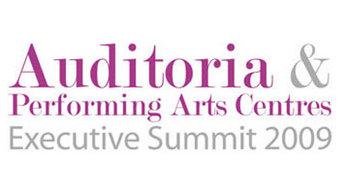 A2009-01-29_auditoria_big