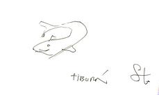 Tiburón, por Fruto Vivas