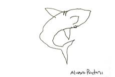 Tubarão, por Álvaro Puntoni