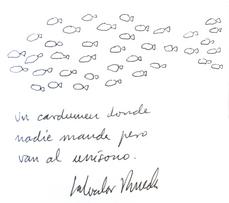 cardumen, por Salvador Rueda