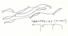 Turbuipezias (pitxot), por Gonzalo Díaz-Recasens