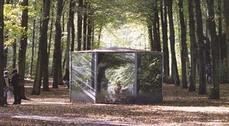 """Exposición """"El bosque y la caverna"""", de Carlos A. Schwartz"""